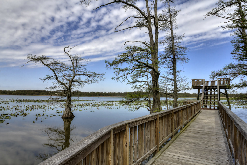 Reelfoot Lake 1, Grassy Island Unit, Reelfoot National Wil… | Flickr