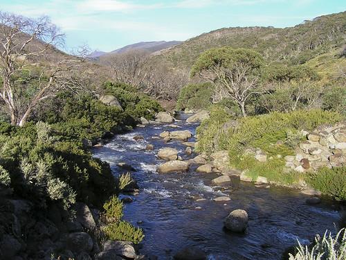 Thredbo River, Kosciuszko National Park | by Australian Alps