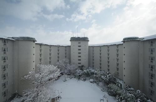 White Court