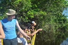 Pescant piranyes (un altre fracàs)