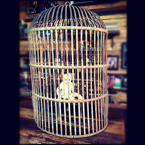 baby doll in a cage. this one's for @linacrow. | by sarahwulfeck