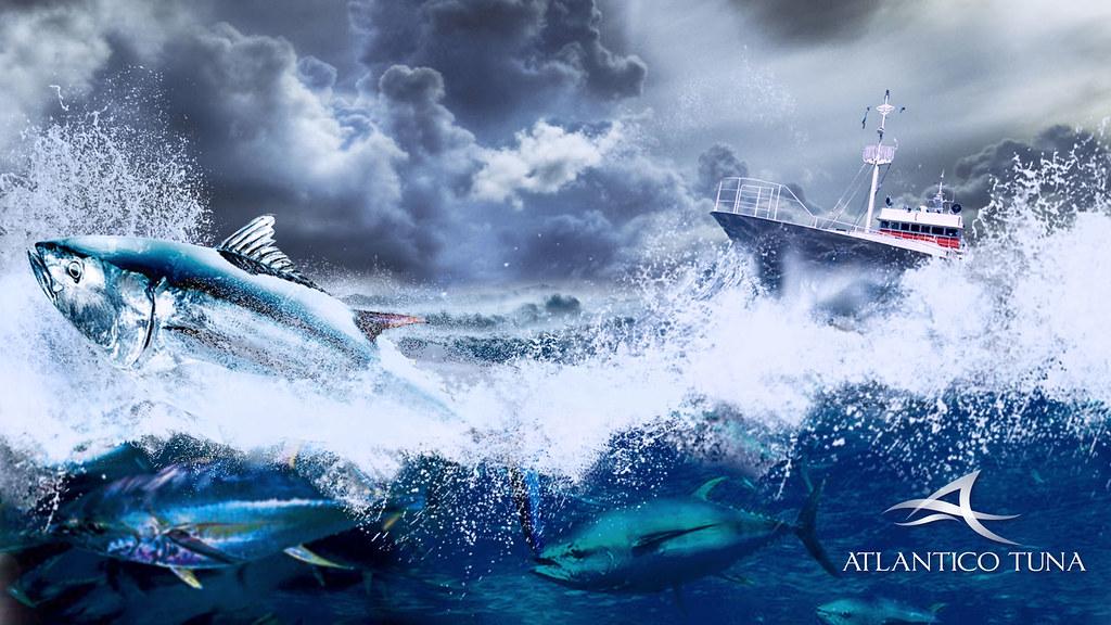 Wallpaper Atlantico Tuna   by Giovanni Calzavara Wallpaper Atlantico Tuna   by Giovanni Calzavara