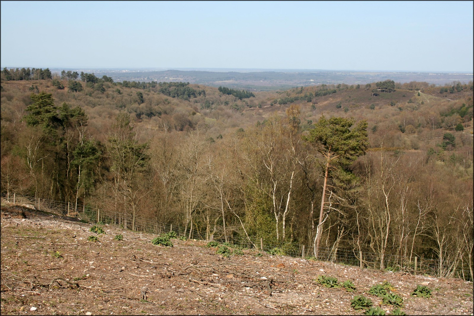 Hindhead common The view from Hindhead common