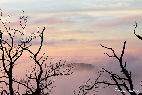 sunrise australia queensland toowoomba timothyswinson kingbobnet