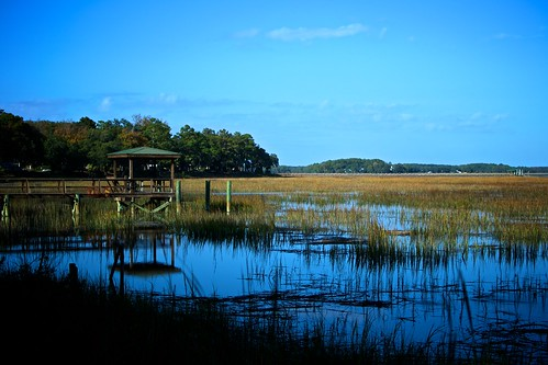 ocean blue trees sky sun clouds river reeds bay dock south carolina marsh beaufort