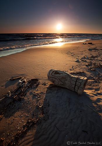 wood travel ohio sculpture lake tourism beach water sunrise skull sand midwest lakeerie outdoor shoreline carving greatlakes driftwood tiki washedup huron chaskabeach leefilters ohiotourism nickelplatebeach ohiotravel