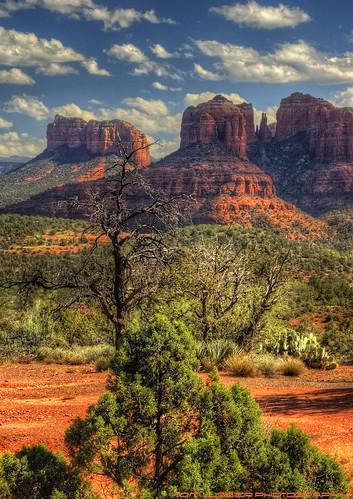 arizona usa tree clouds landscape nikon desert sedona tomlussier tpslandscape