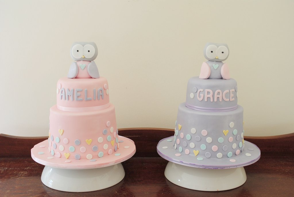 Excellent 1St Birthday Twin Owl Cakes Twin Cakes For Owl Cakes For T Flickr Personalised Birthday Cards Akebfashionlily Jamesorg