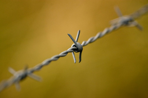 Barbed wire | by Billeh1977