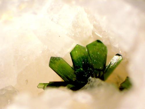 olivenit   by michael pollak