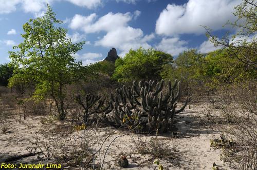 Parque Nacional Catimbau - Pernambuco - Brazil
