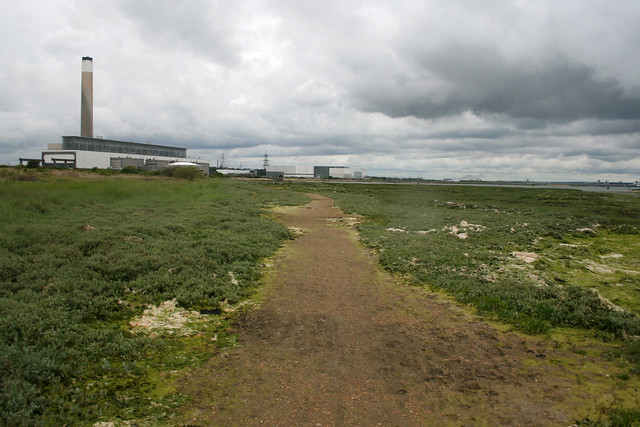 Calshot Marshes