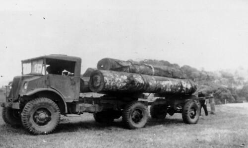 qld queensland trucks motor statelibraryofqueensland 19401950 slq tarzali