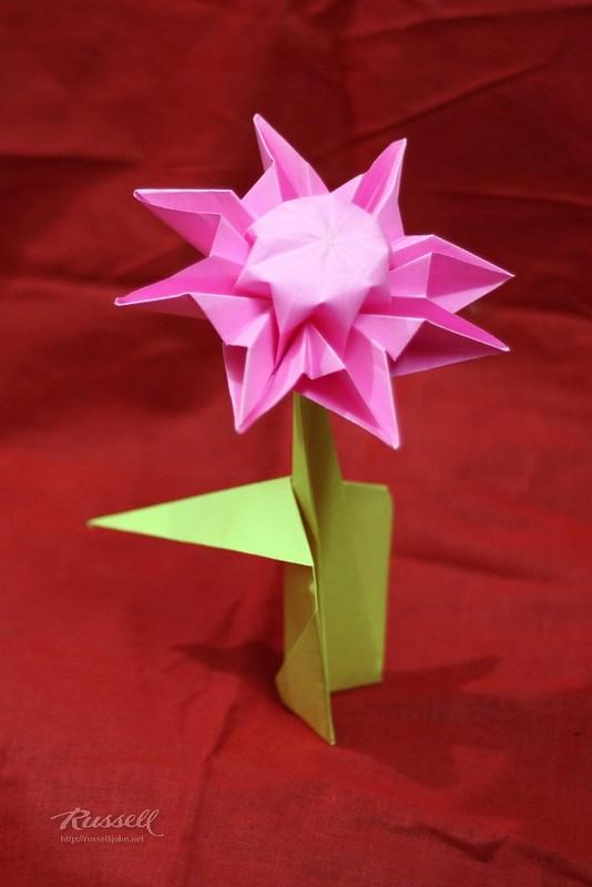 Origami Daisy with Stem