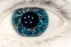 Catchlighteye by wion