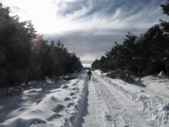 el largo camino..the long road..