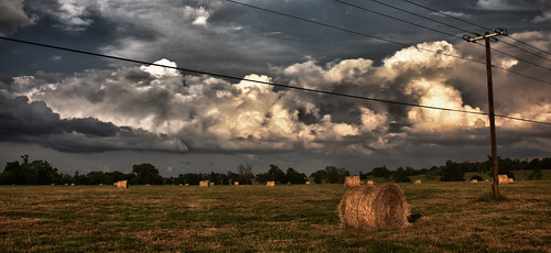 field landscape texas pasture hay goodrich hdr livingston