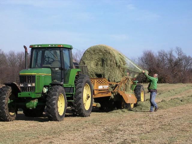 Ready to Unroll 1-30-12-Ritz farm