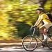 Bicycling_Fall_season by Aliniazgd
