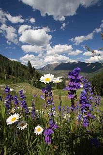 Beautiful Spring Day - Durango, Colorado | by Visit Durango