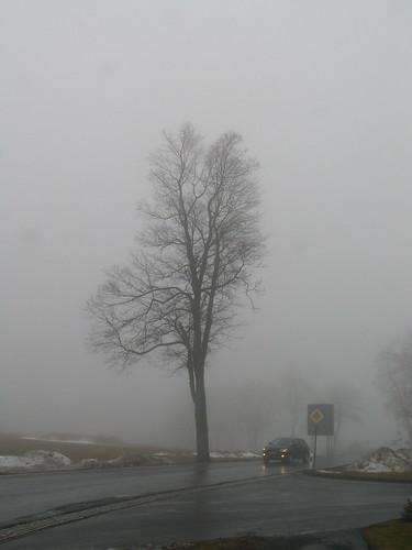 Nebel im Erzgebirge, Scharf klang mein Schritt in Frauenstein, ich riß dich zu mir, ein gläubiges Kind und was ich in Lebensängsten litt, hin starb es wie flüsternder Abendwind 158