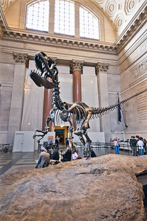 American Museum of Natural History | by mariocutroneo