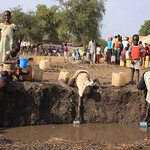 UNHCR News Story: UNHCR seeks US$145 million to help tens of thousands of Sudanese refugees