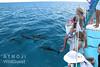 Bimini – delfíny a děti, foto: Atmoji ©WildQuest