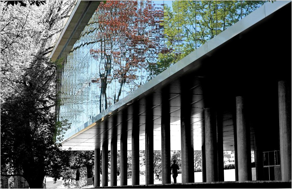 Extension De Rudy Ricciotti Du Musee Des Beaux Arts De La Flickr