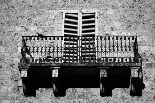 Balcony, with pigeon