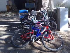 Mar, 02/28/2012 - 10:31 - Biciclette