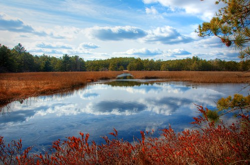 sky reflection nikon day massachusetts plymouth bog photomatix campcachalot tonemapped campmaster d7000 cachalotscoutreservation afsdxvrzoomnikkor18200mmf3556gifedii