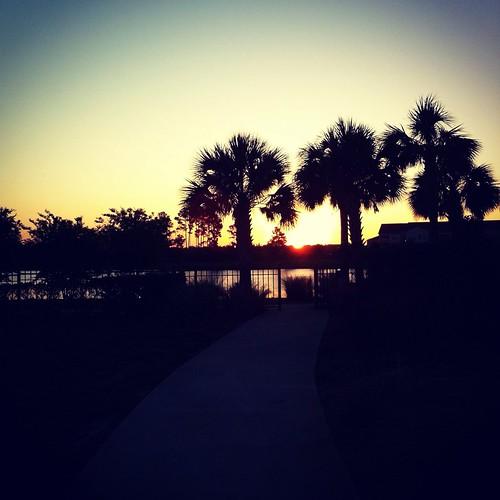 silhouette sunrise florida jacksonville