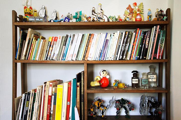 מדף הספרים עם אוסף מרשים של צעצועים מיניאטורים של שי