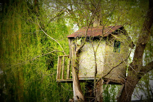 Treehouse - Lomo-ish | by OldOnliner