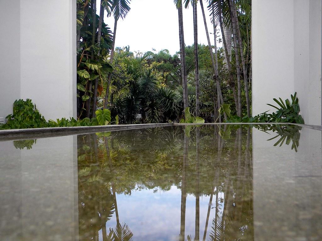 miami beach botanical garden 6 | jorge elías | flickr