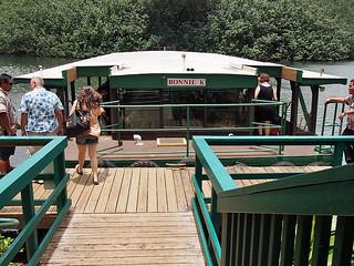 Wailua River Cruise 3 | by KathyCat102