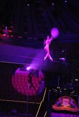 2012. február 25. 21:37 - Fesztivál Plussz 27
