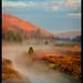 Mystic Meadow by Joseph Rossbach(www.josephrossbach.com)