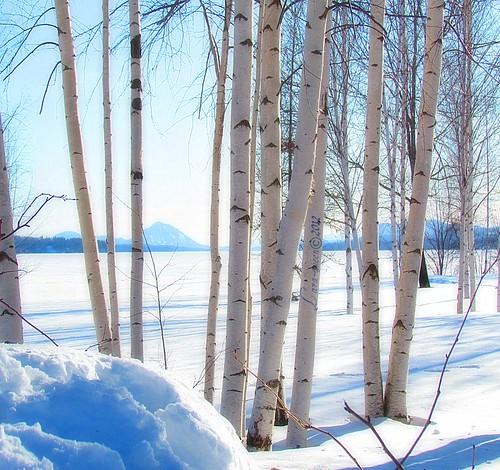 blue winter mars white canada landscape march quebec magog hiver bleu paysage blanc 2012 quynhvu saariysqualitypictures laraqueen canonpowershotsx30is