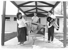 Child Care Centre  MOVING DAY. On 13th January 1988 Jackie Dudley, Sue Nash and Carol Owens became temporary furniture removalists.