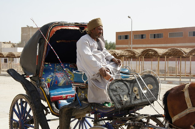 A Horse Cart driver in Aswan's Edfu