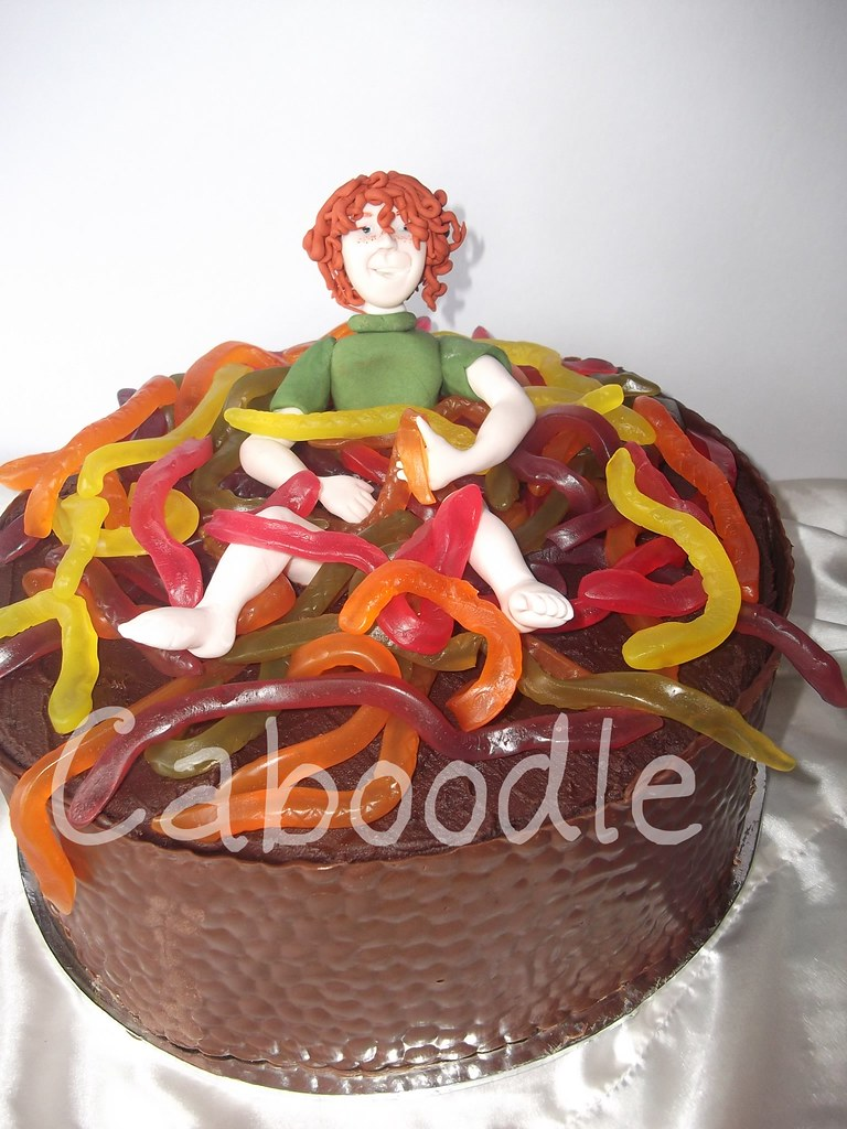 Amazing Snakes Alive Now I Dont Normally Do Lollies On Cakes But I Flickr Funny Birthday Cards Online Amentibdeldamsfinfo