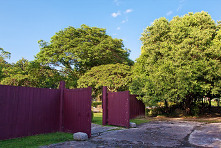 Dr Seenivasagam Garden