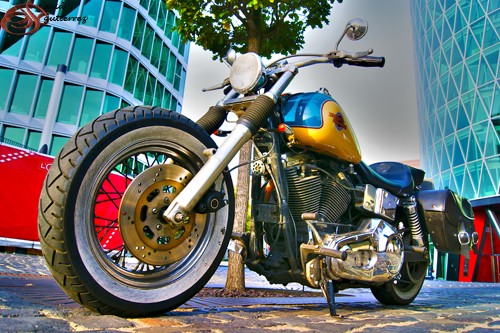 Harley Davidson Colors >> Harley Davidson Colors Please Don T Use This Image On Webs