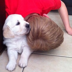 Goodbye hugs with our new puppy. See you soon little one! Xx