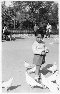 Feeding the Doves, October 1958