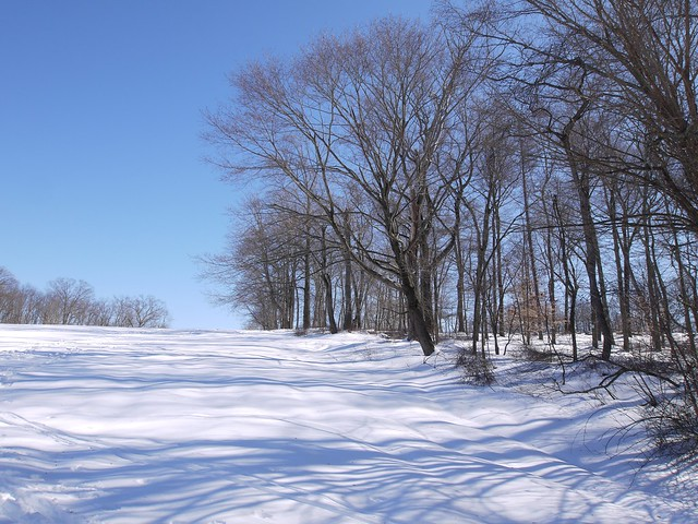 月, 2014-02-17 12:40 - Rockefeller Park