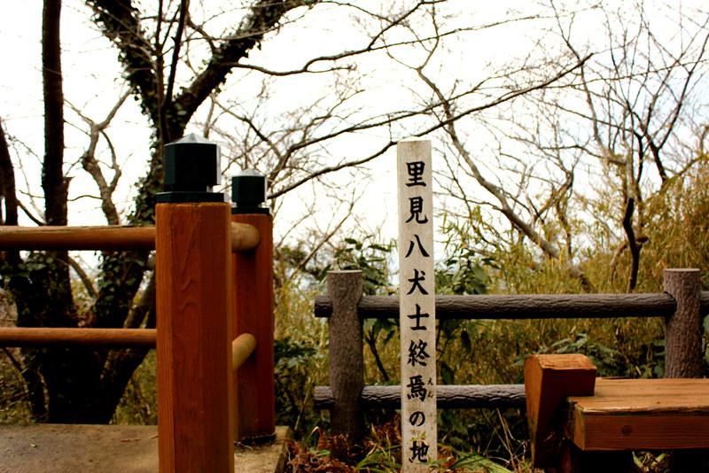 20120311_伊予ヶ岳_0067