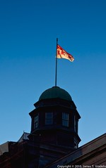 McGill Flag